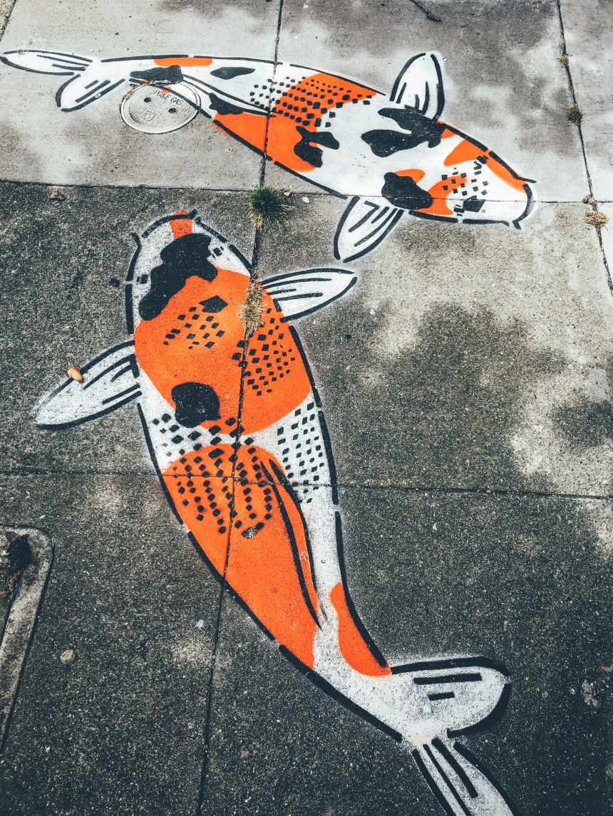Koi Fish graffiti on the sidewalks of San Francisco in the mission district
