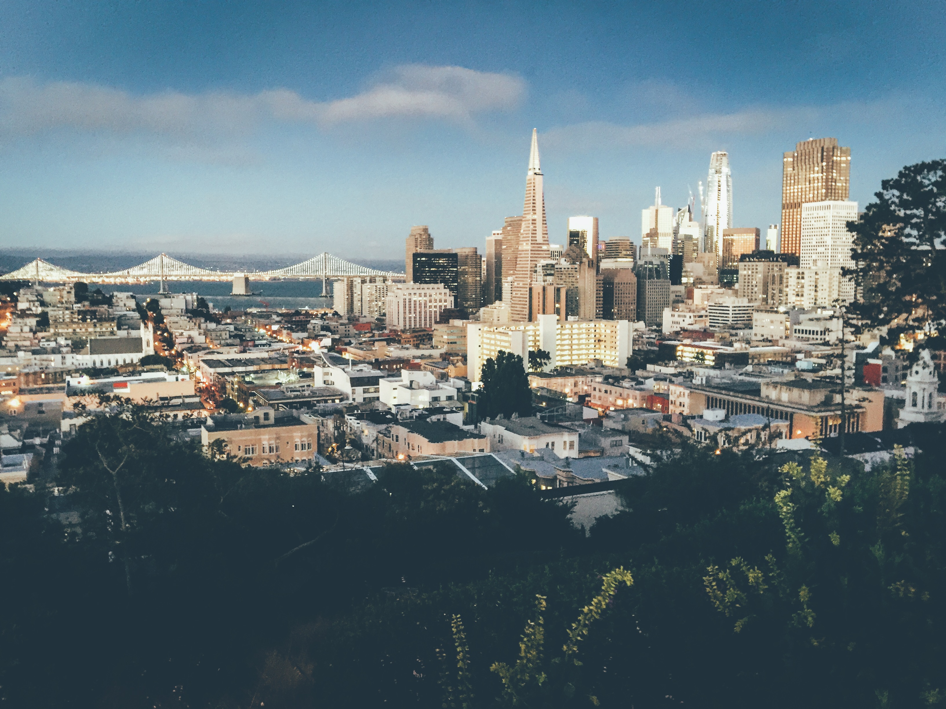 San Francisco city and skyline view of Transamerica building and salesforce biulding